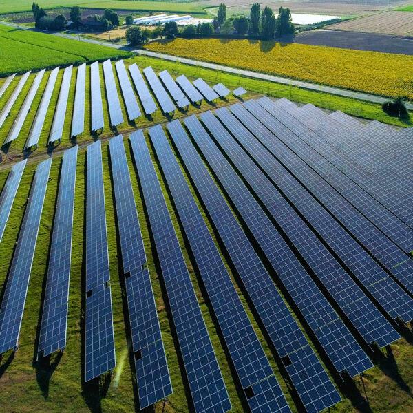 Installation au sol de panneaux solaires l Silicéo